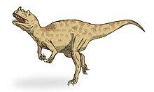Ceratosaurus sketch2.jpg