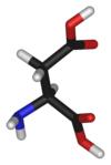 Asparaginsyra