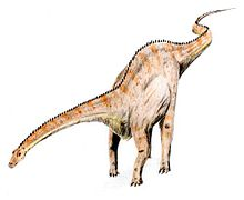 Diplodocus Teckning av ArthurWeasley