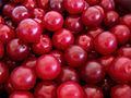 Cherry plums.jpg