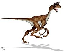 teckning som visar hur arten oviraptor skulle ha sett ut