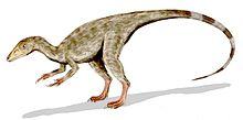 Illustration av Compsognathus, gjord av användare Arthur Weasley.