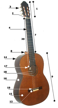 Delarna på en akustisk gitarr.